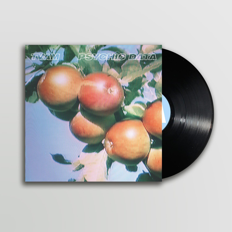 Psychic Data LP - 180gm Black Vinyl (w/ instant Download) - TVAM
