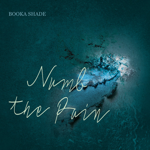 "Booka Shade ""Numb The Pain"" (with Craig Walker) - 12inch with free mp3 Download / Blaufield Music - BOOKA SHADE"